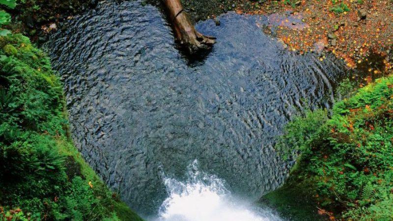 Auftanken an der Quelle